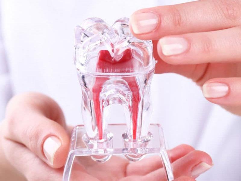 Endodonti Polikliniği
