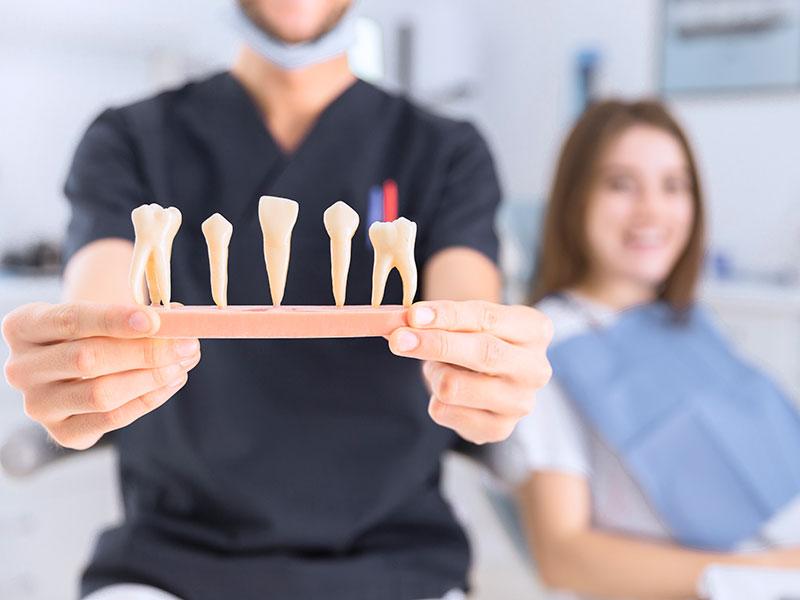 Ortodonti Polikliniği